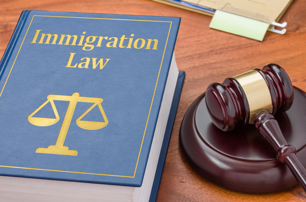 A Brief History of Americas Immigration Law
